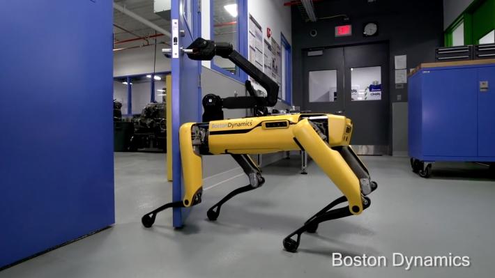 Robot Anjing Ini Bisa Membuka Pintu