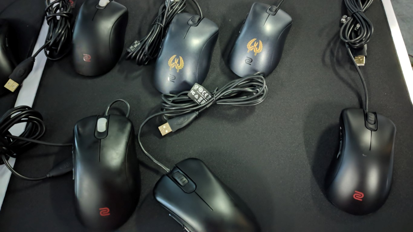 Zowie Mouse ECB