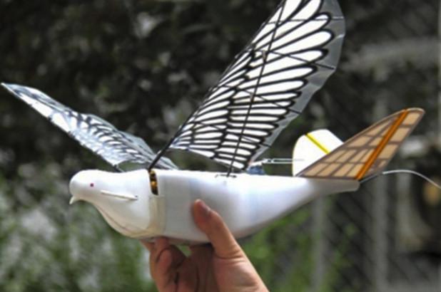 """Pantau Wilayah Perbatasan, China Gunakan Drone """"Burung"""""""