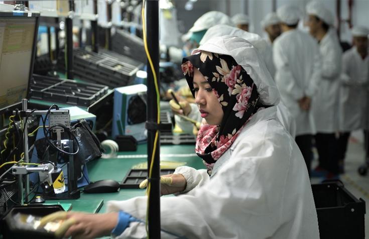 vivo pabrik