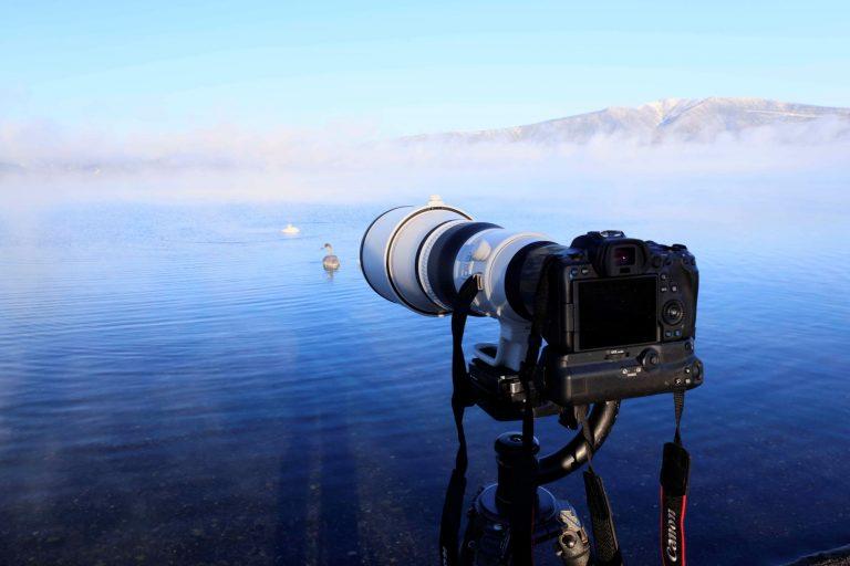 Canon Perkenalkan Lensa Super Telephoto Andalan dengan Mount RF